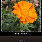 フェリシモ My500色カメラ3