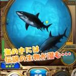 Wonder in Aqua3