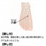 東洋医学診断チャート5